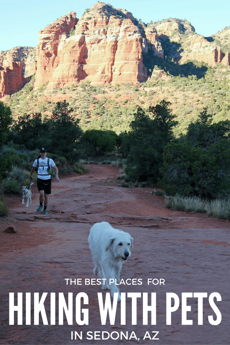One of the greatest ways to enjoy the great outdoors is by hiking. Hiking with pets in Sedona is a great way to get everyone out and about, enjoying nature!