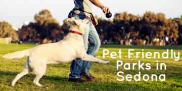 Bring your furry friend along the next time you head out to one of these pet friendly parks in Sedona! Fun, exciting, exercise for the whole family.