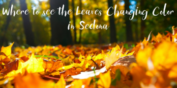 Where to see the Leaves Changing Color in Sedona